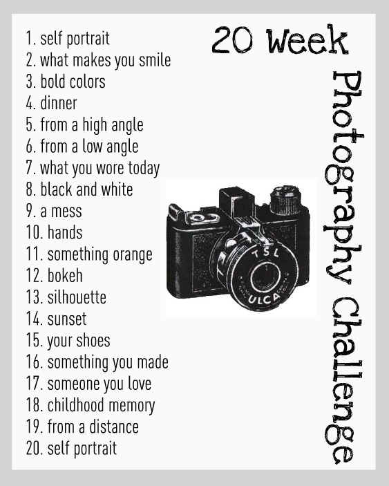 My 20 Week Photo Challenge | mylife.carlinanquist.com